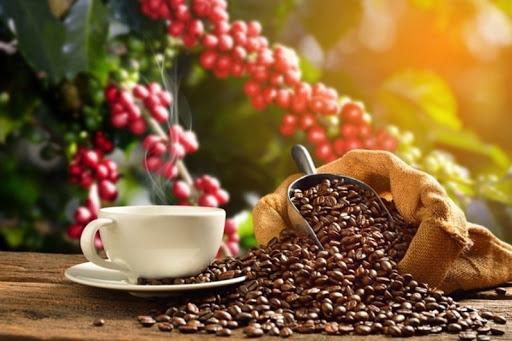 Tin nông sản: Cà phê liên tục giảm, tiêu tiếp đà tăng mạnh